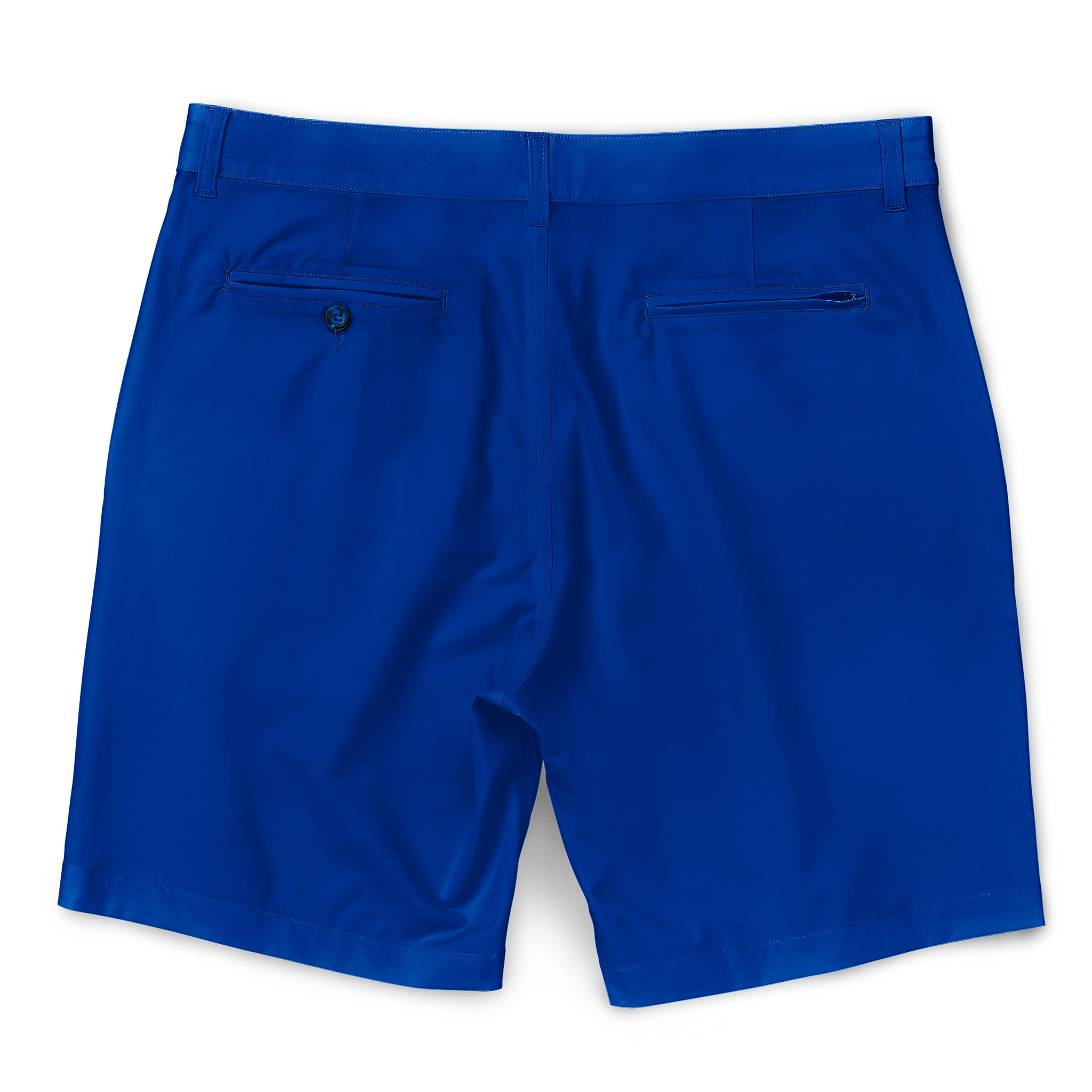 All Tides Walkshorts Royal Back