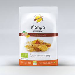 Mango - bio Snack - Single Pack