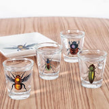 Set shot verres insectes