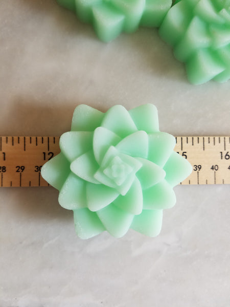 Succulent Soap Wedding Favors Set of 12 - The Lovely Gift Co