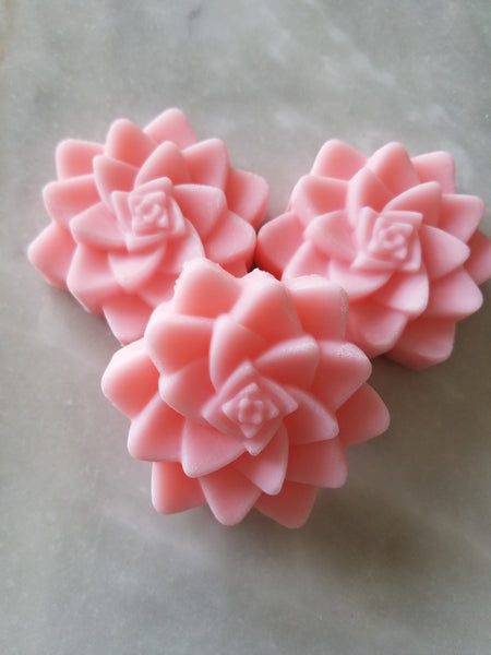 Succulent Soap Baby Shower Favors Set of 12 - The Lovely Gift Co