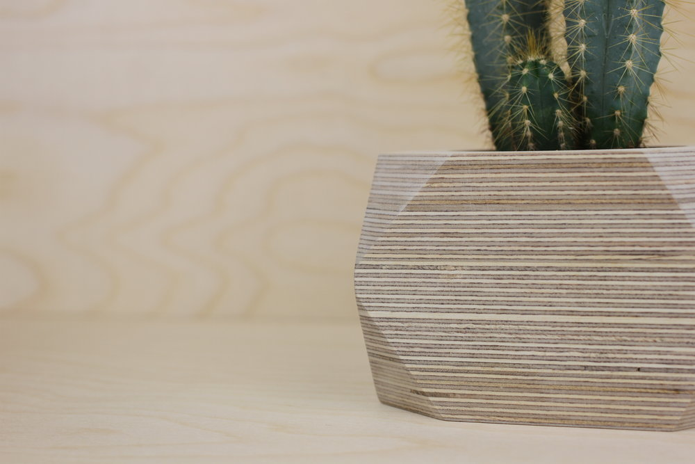 Out Of Order Design Plant Pots.  SERIES 1: BIRCH