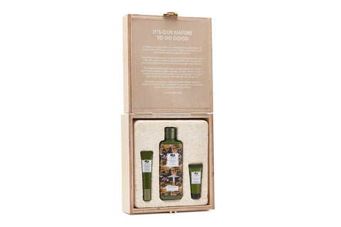 Origins Mega Mushroom Skin Soothing Essentials LImited Edition Set