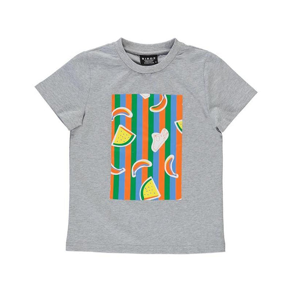 Grey cotton summer tee with colourful stripes and fruits print