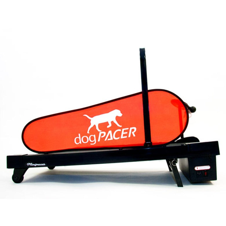 dogPACER Minipacer Electric Dog Treadmill Treadmill canine-athletes