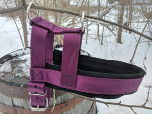 Standard Issue Heavy Duty Everyday Dog Harness Collars canine-athletes