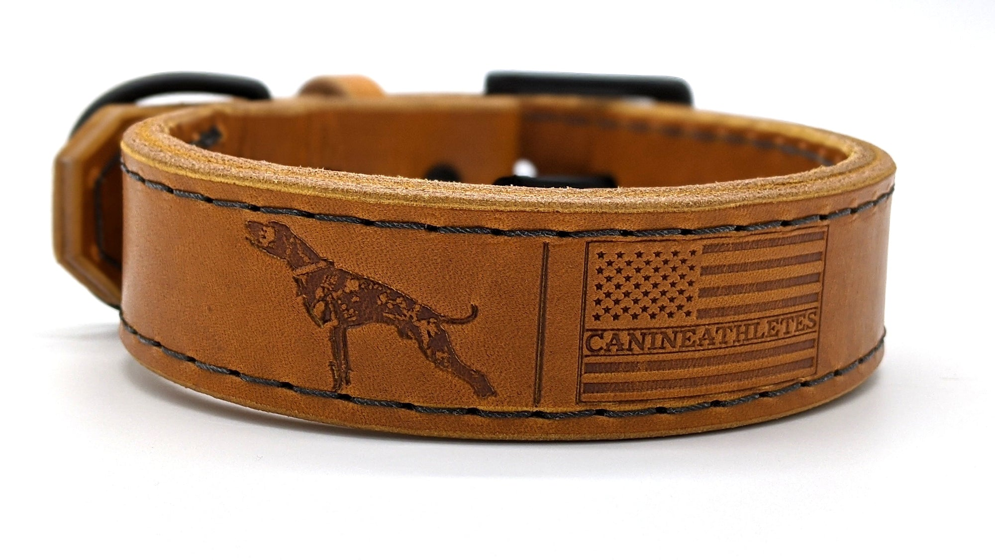 Canine Athletes Leather Agitation Collar