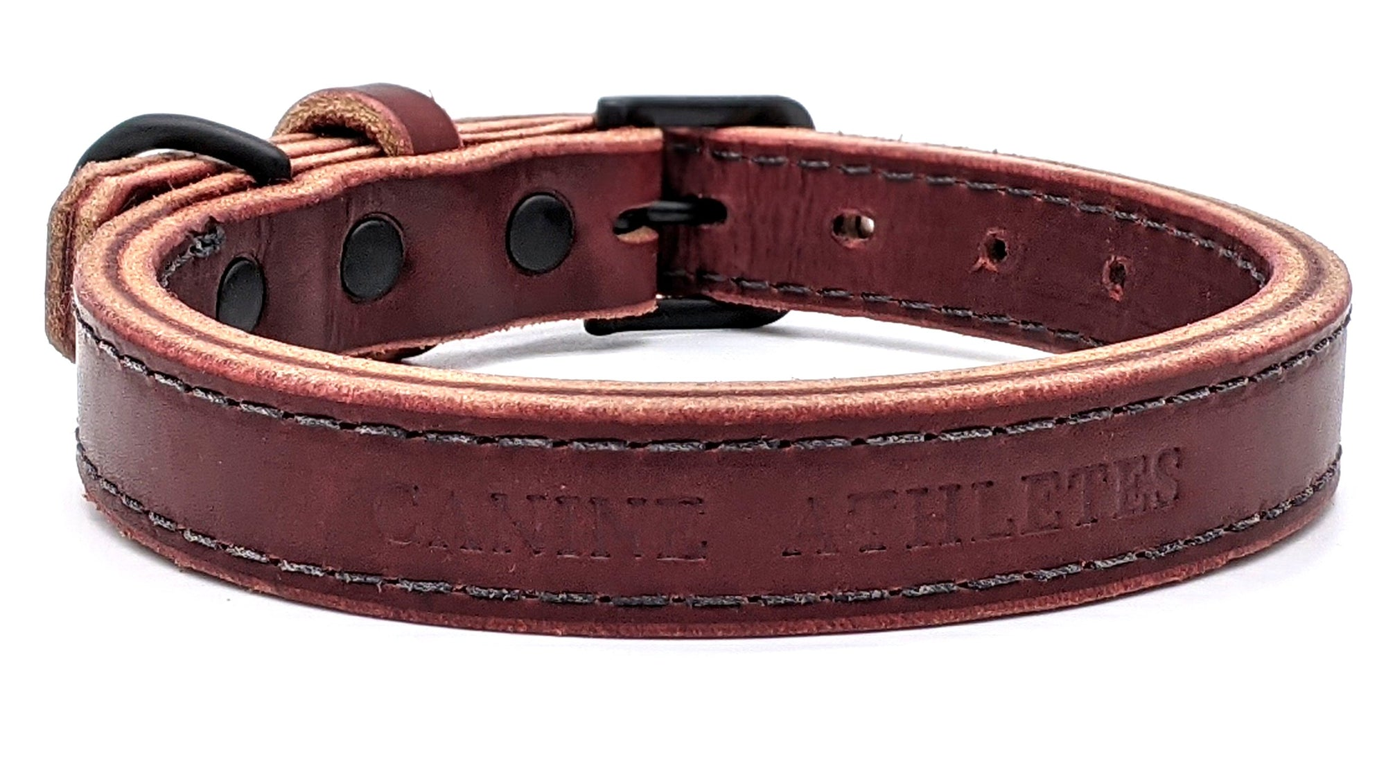 "Canine Athletes 1"" Leather Dog Collar"