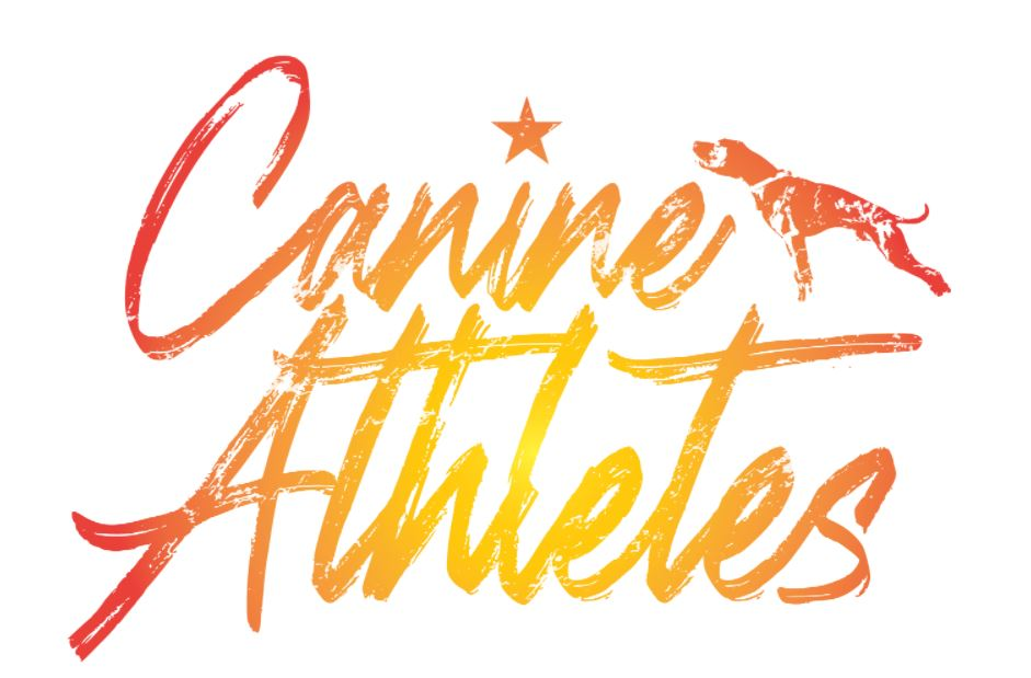 Canine Athletes Starburst Vinyl Decal - Matte Laminated