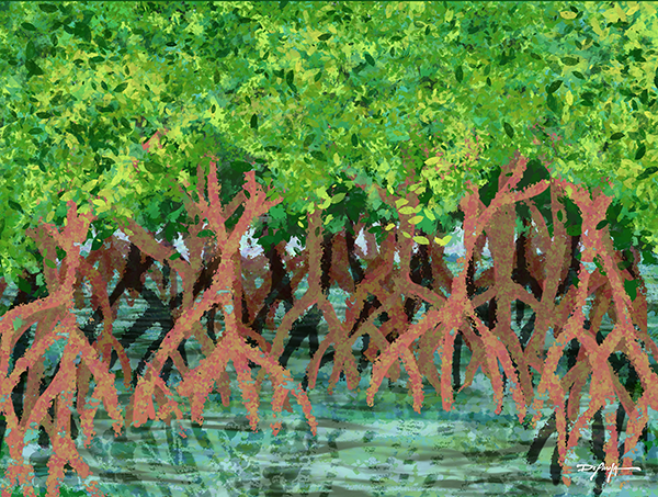 The Mangroves Fine Art Landscape Canvas