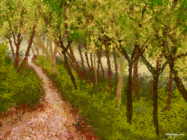 A Quiet Walk Through the Forest Fine Art Canvas