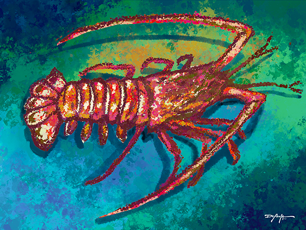 Spiny Lobster Fine Art Canvas