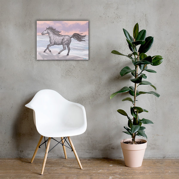 Corolla Wild Beach Horse Fine Art Canvas