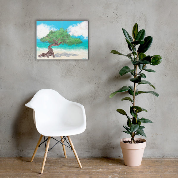 Aruba's Fofoti Tree on the Beach Fine Art Canvas