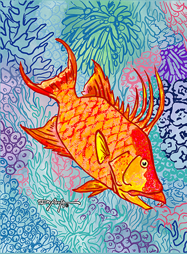 Sapphire Reef Hogfish Hog Snapper Fine Fish Art Canvas Print
