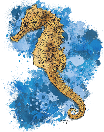 Seahorse Expressionism Canvas