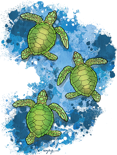Hatchling Sea Turtles Expressionism Fine Coastal Art Canvas Print