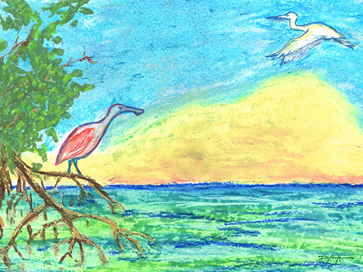Everglades Morning Commute Spoonbill Heron Fine Art Canvas Print