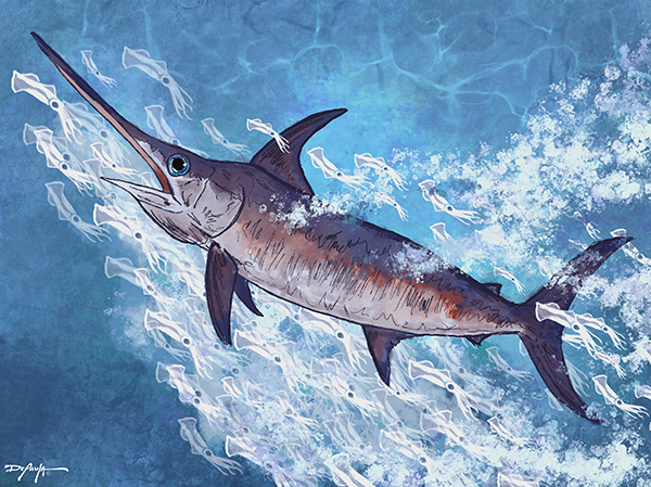 Swordfish Fine Art Canvas