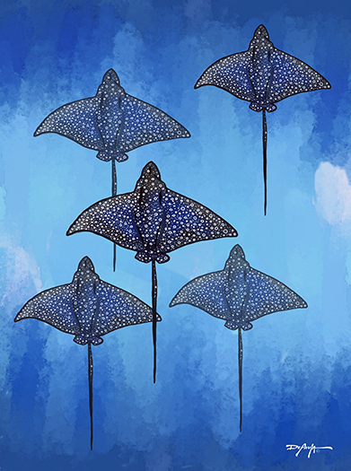 A Fever of Spotted Eagle Rays Fine Art Canvas Print