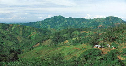 Honduras Tropical Mountain Area