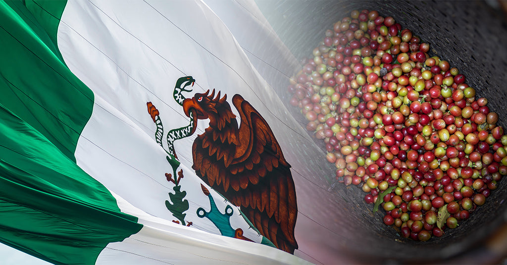 Chiapas Coffee from Mexico, Coffee of the Month Club