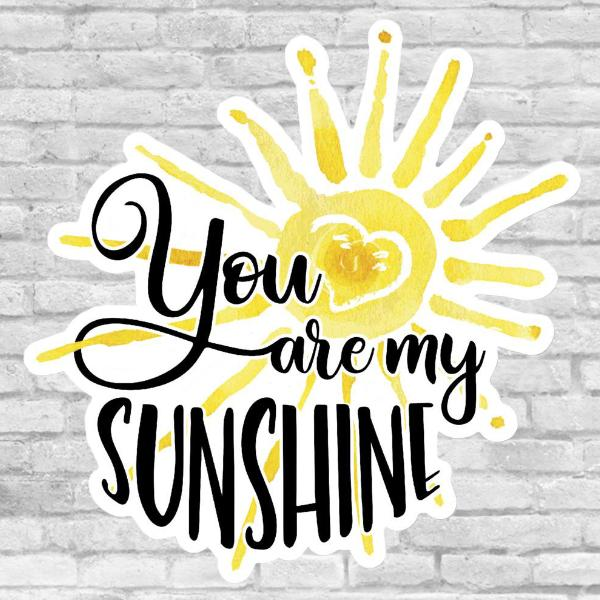 You Are My Sunshine Sticker Salmon Olive