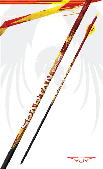 Black Eagle Spartan 100% Carbon 6-Pack Arrows