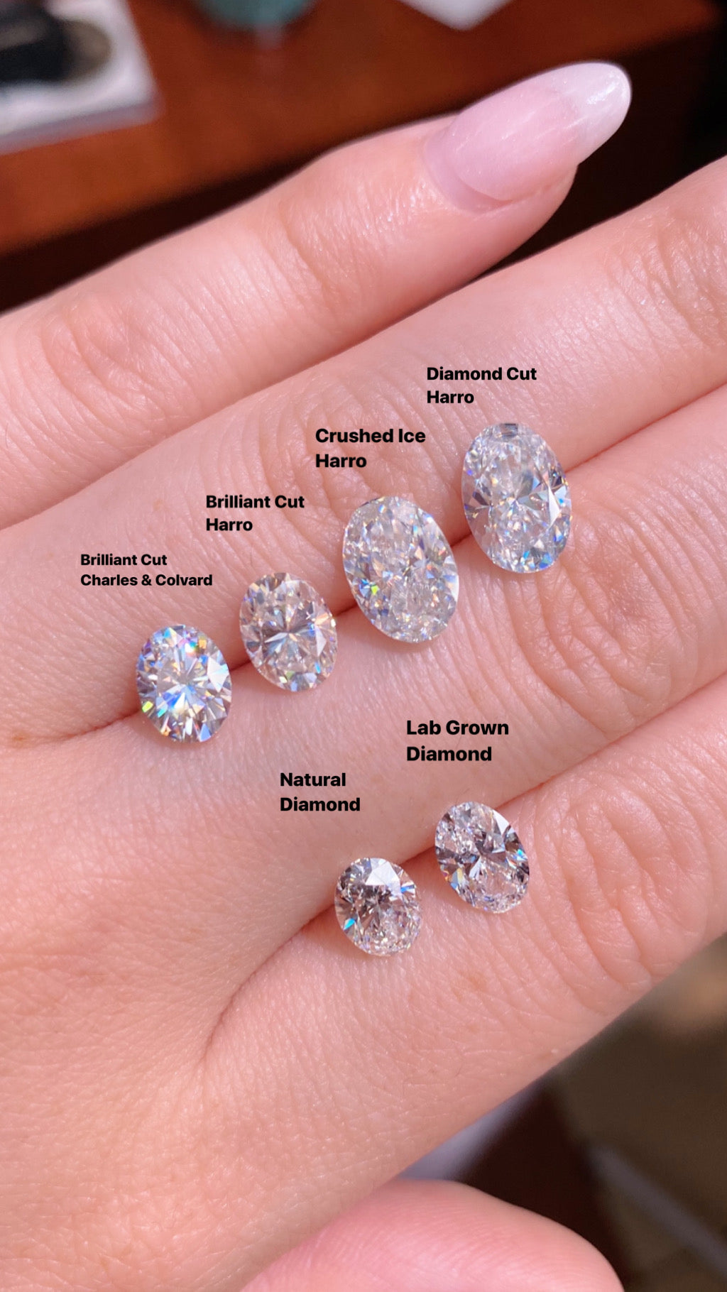 Oval Harro Gem Moissanite vs Charles and Colvard Moissanite vs Lab Diamond vs Natural Diamond