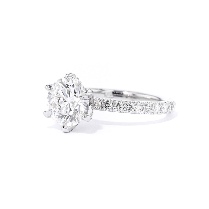 Maggie Round 6 Prongs Engagement Rings Princess Bride Diamonds