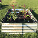 Raised Metal Garden Bed for Tomatoes