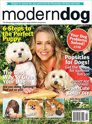 The Dog Days of Summer: Modern Dog Magazine