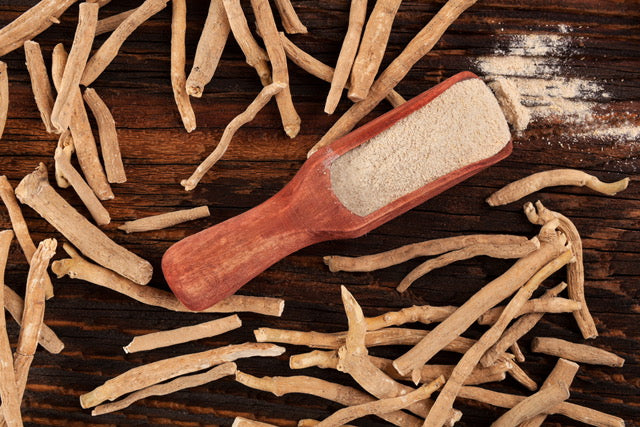 Ingredient Feature: Ashwagandha