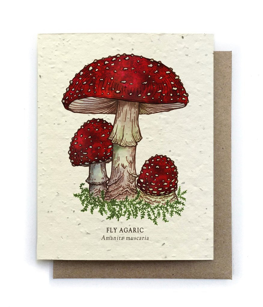 The Bower Studio - Fly Agaric Mushroom Greeting Cards - Plantable Seed Paper - Notecard - Stomping Grounds