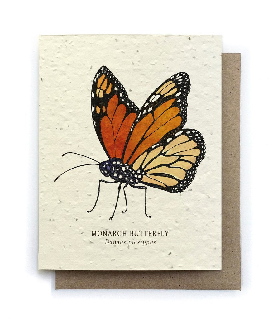 The Bower Studio - Monarch Butterfly Greeting Cards - Plantable Seed Paper - Notecard - Stomping Grounds
