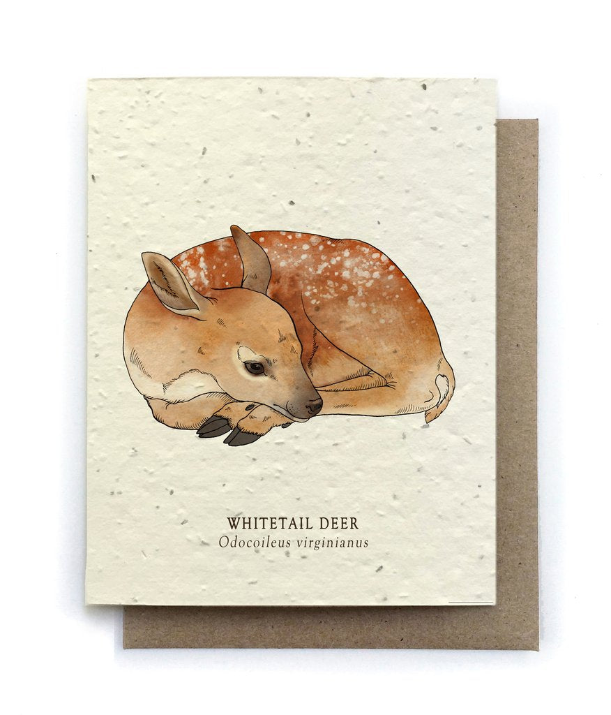 The Bower Studio - Deer Animal Greeting Cards - Plantable Seed Paper - Notecard - Stomping Grounds