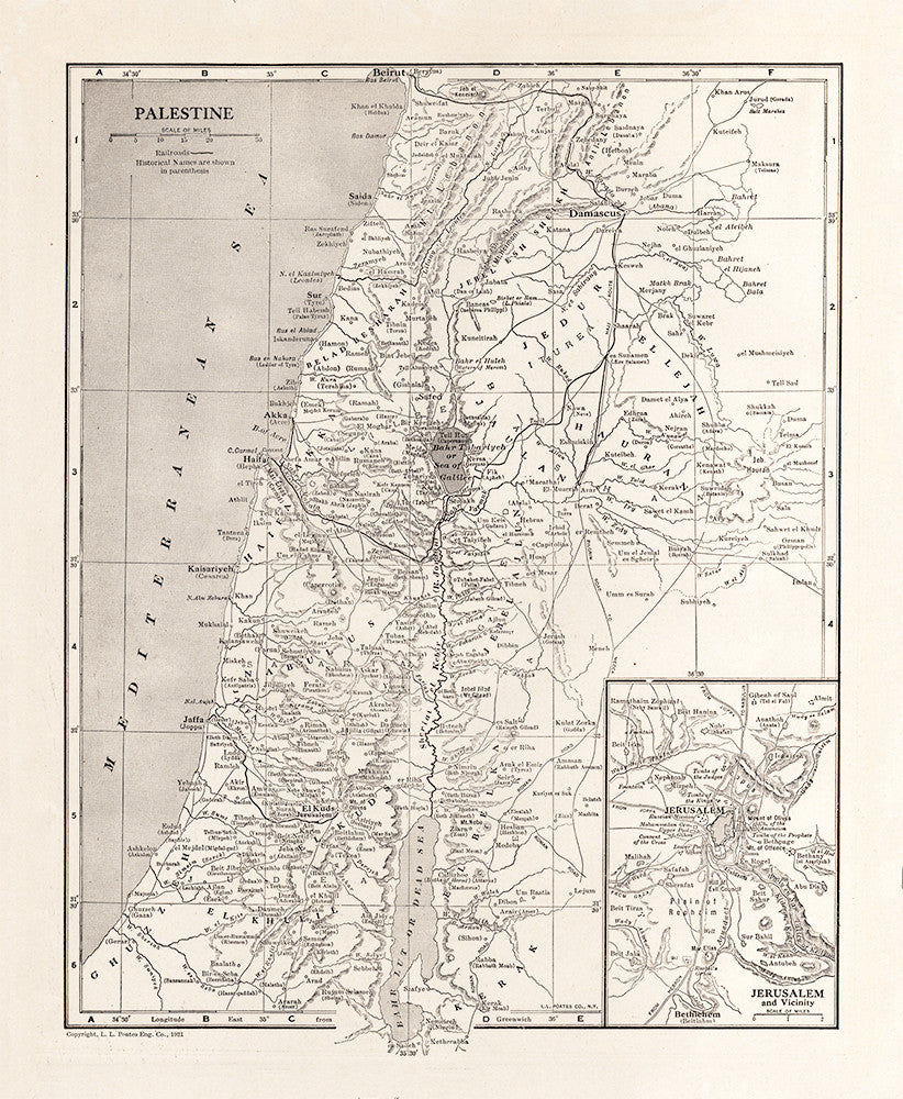Map of Palestine - Print - Stomping Grounds