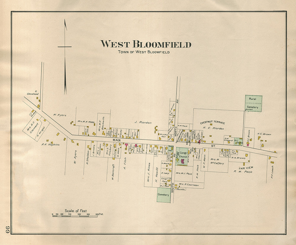 Town of West Bloomfield - Print - Stomping Grounds
