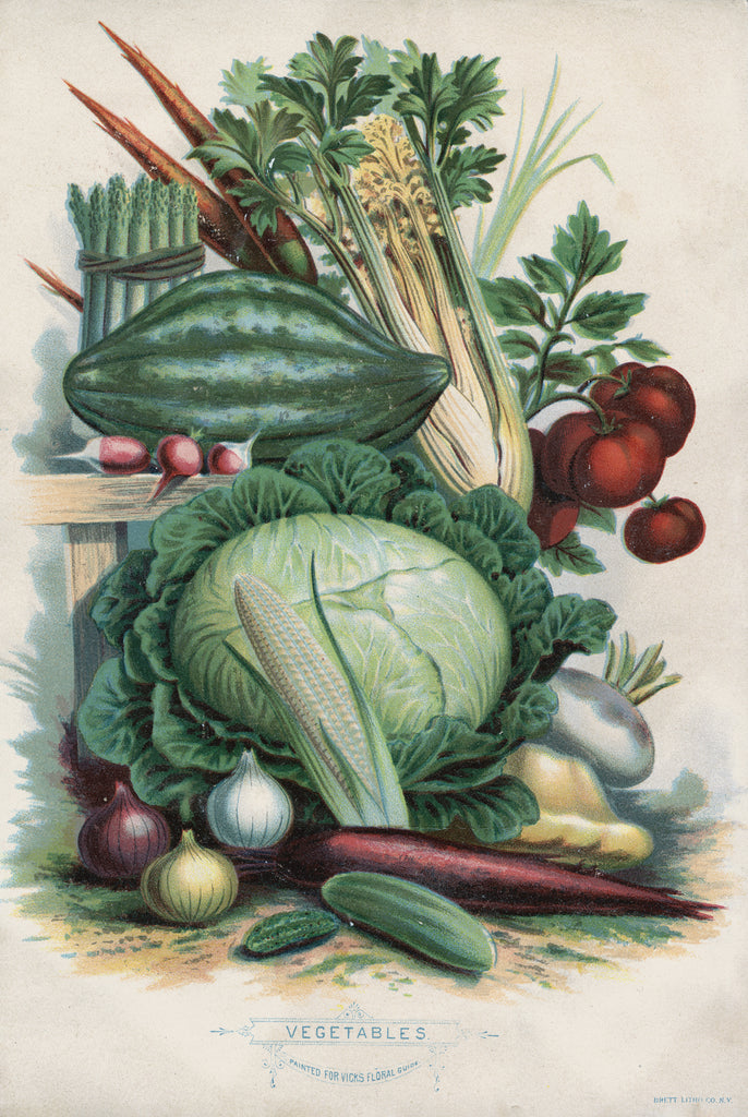 Vegetables - Print - Stomping Grounds