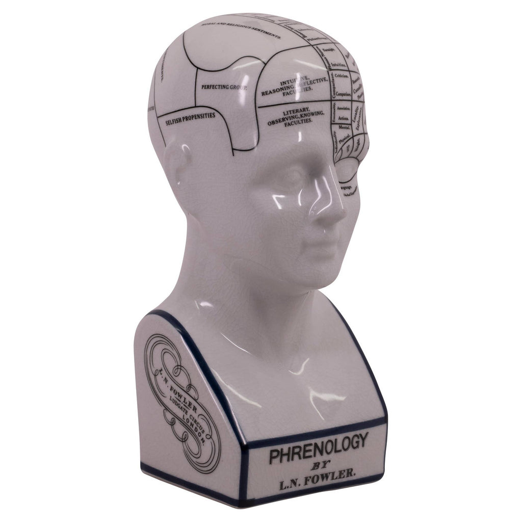 Authentic Models - Phrenology Head Small
