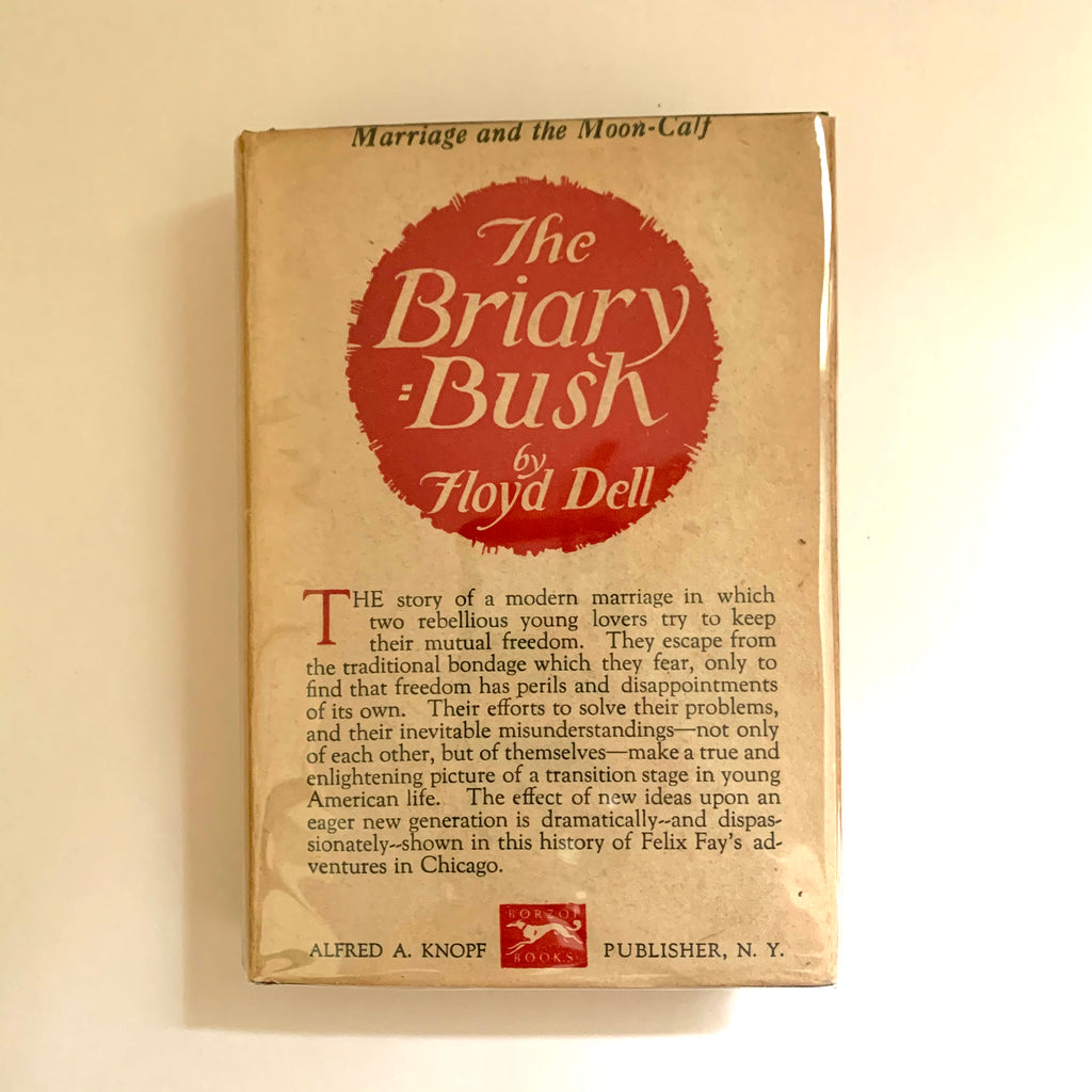 Vintage Book- The Briary Bush by Floyd Dell