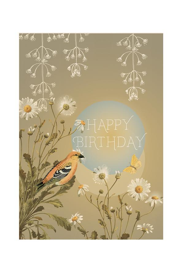 Birthday Daisy - Notecard - Stomping Grounds