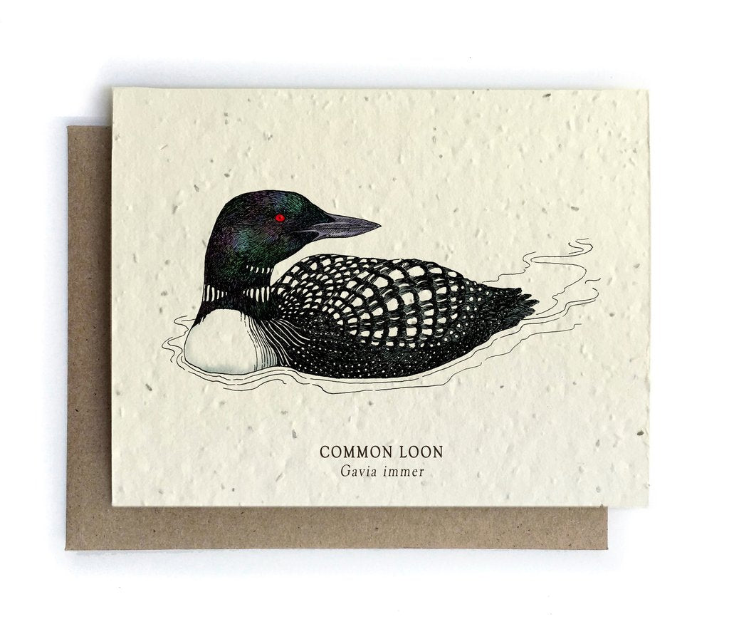 The Bower Studio - Loon Bird Greeting Cards - Plantable Seed Paper - Notecard - Stomping Grounds