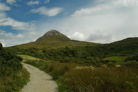Diamond Hill at Connemara National Park