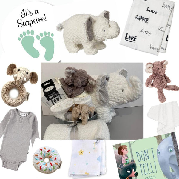 Surprise! Gender Neutral Baby Gift Ideas