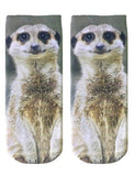 Meerkat Graphic Socks