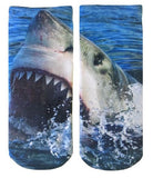 Shark Graphic Socks