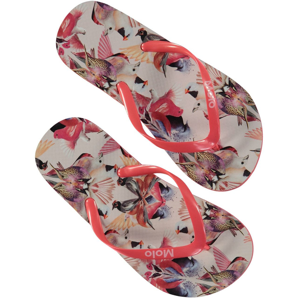 MOLO Zeppo FlipFlops - Mirror Birds
