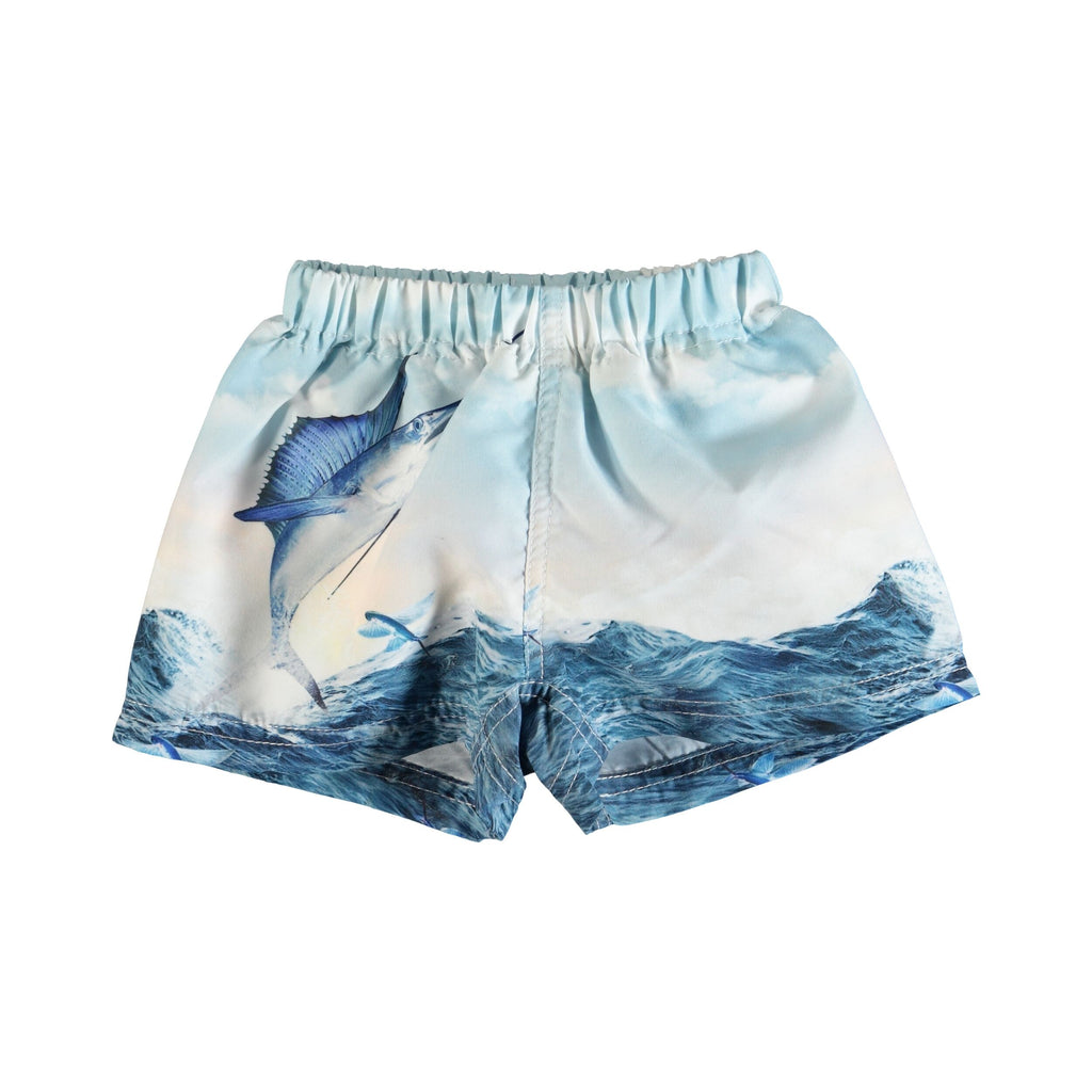 MOLO Newton Trunks - Catch