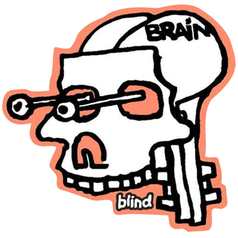Blind Rudy Johnson Experimental Sticker Accesorios -Pegatina - Furtivo! Skateboarding